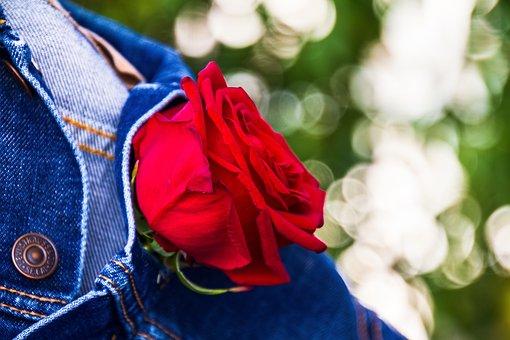 rózsa pénisz