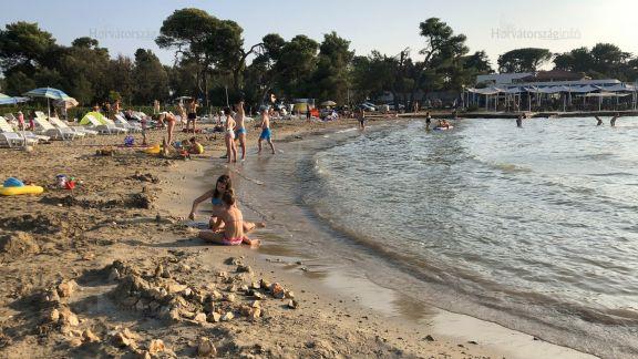 fórum pufók a tengerparton
