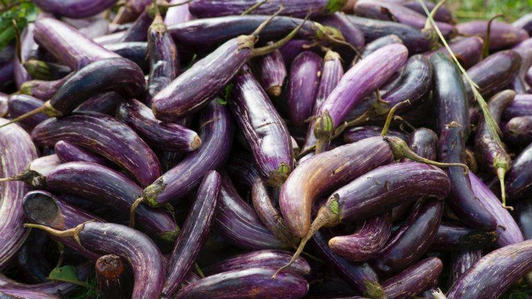miért változik lila a pénisz